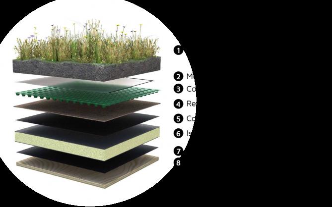 Composants d'un toit vert